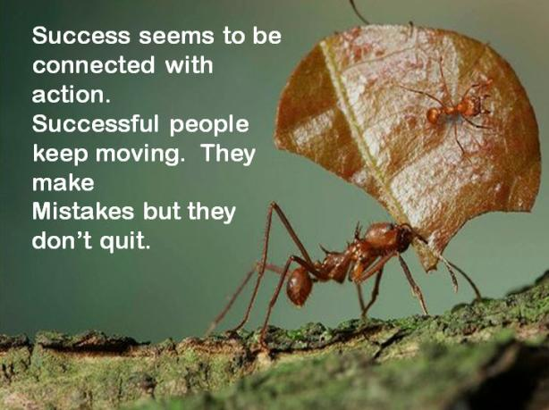 success-seems-to-be-connected-with-action-successful-people-keep-moving