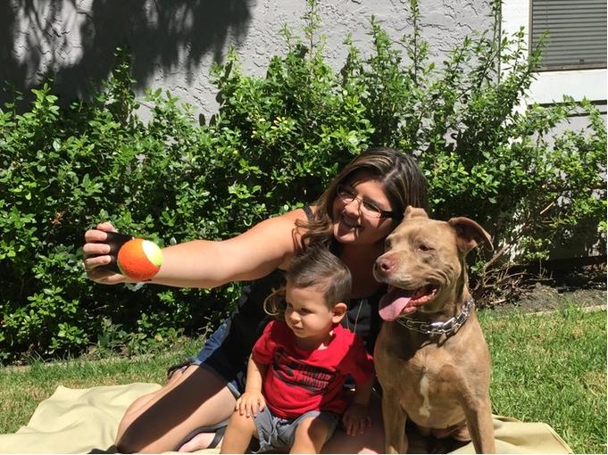 """Pooch Selfie - Thiết bị """"tự sướng"""" dành cho cún cưng"""
