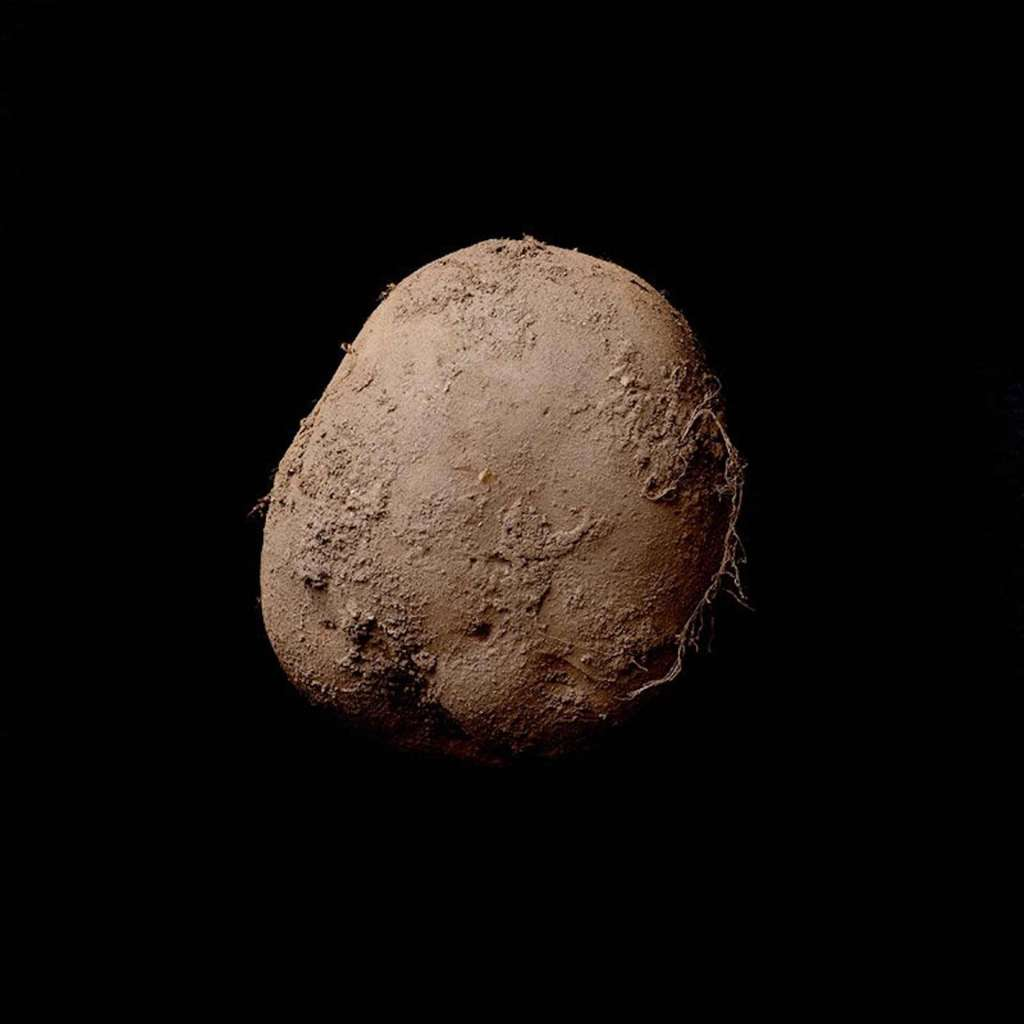 Bức ảnh chụp củ khoai tây được bán với giá 1 triệu USD