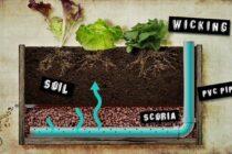 Wicking bed – Hệ thống tưới nước tự động nhờ sự thấm hút cho vườn rau nhà bạn