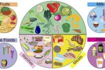 Chế độ ăn uống hợp lý được chính phủ Mỹ công bố: nên ăn trứng, hạn chế đường, muối và đồ ăn nhanh