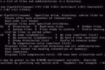 MS DOS: viên đá nền móng của Microsoft được cho về hưu sau 36 năm tồn tại