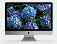 Tim Cook khẳng định Apple sẽ tiếp tục duy trì máy Mac