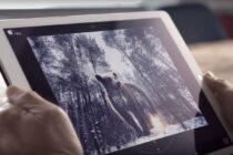 Adobe trình diễn trợ lý ảo có khả năng chỉnh sửa hình ảnh