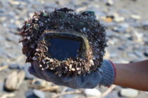 Tìm lại được máy ảnh rơi dưới biển sau 2 năm nhờ Facebook