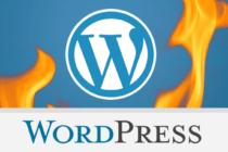 Phát hiện lỗi trong WordPress đã 6 năm vẫn chưa được khắc phục