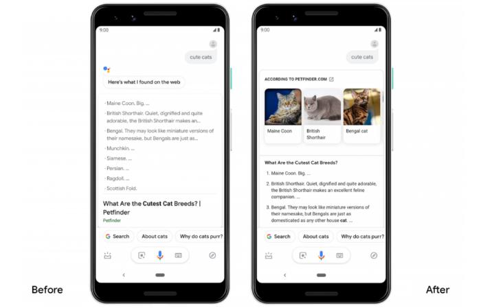 Google Assistant cập nhật, nội dung phản hồi đa dạng hơn