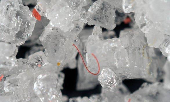 Mỗi người nuốt vào 50.000 hạt vi nhựa mỗi năm