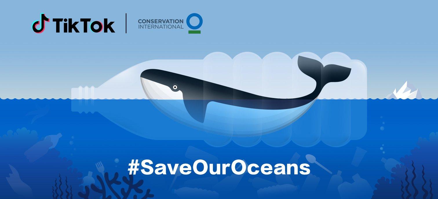 TikTok hợp tác cùng Tổ chức Bảo tồn Quốc tế gây quỹ bảo vệ môi trường biển toàn cầu
