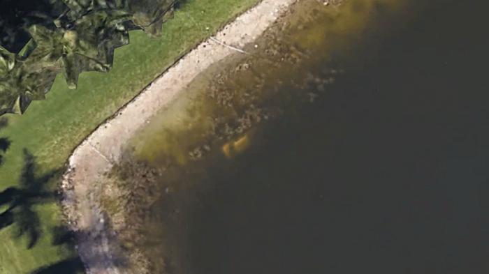 Tìm thấy hài cốt người mất tích từ 22 năm trước nhờ Google Maps