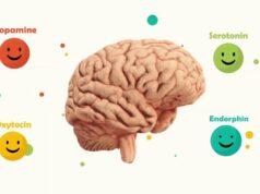 Những thói quen giúp não tiết ra nhiều hợp chất hạnh phúc