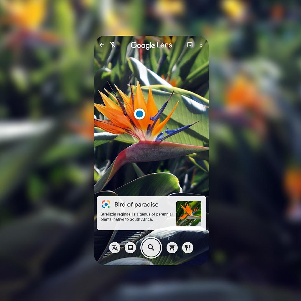 Tìm thông tin, làm việc và học tập thông minh hơn với Google Lens