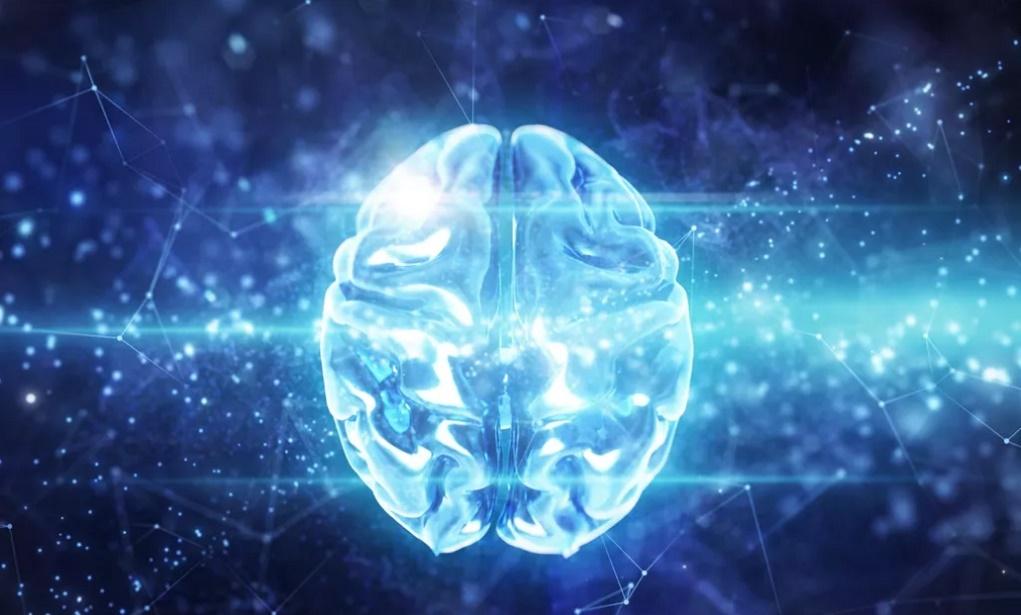 Có thể dùng trí tuệ nhân tạo để duy trì sự sống sau cái chết không?