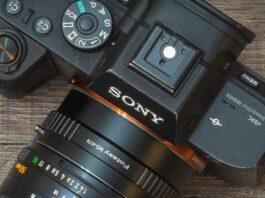 Phóng viên AP được độc quyền sử dụng máy ảnh Sony từ bây giờ