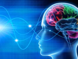 Bắt được hung thủ giết người nhờ công nghệ theo dõi sóng não nghi can