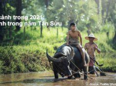 Tầm nhìn của Dell tại Việt Nam trong năm 2021