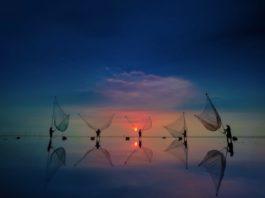 vivo hợp tác cùng Tạp chí National Geographic phát động cuộc thi nhiếp ảnh di động toàn cầu VISION+ Mobile PhotoAwards 2021